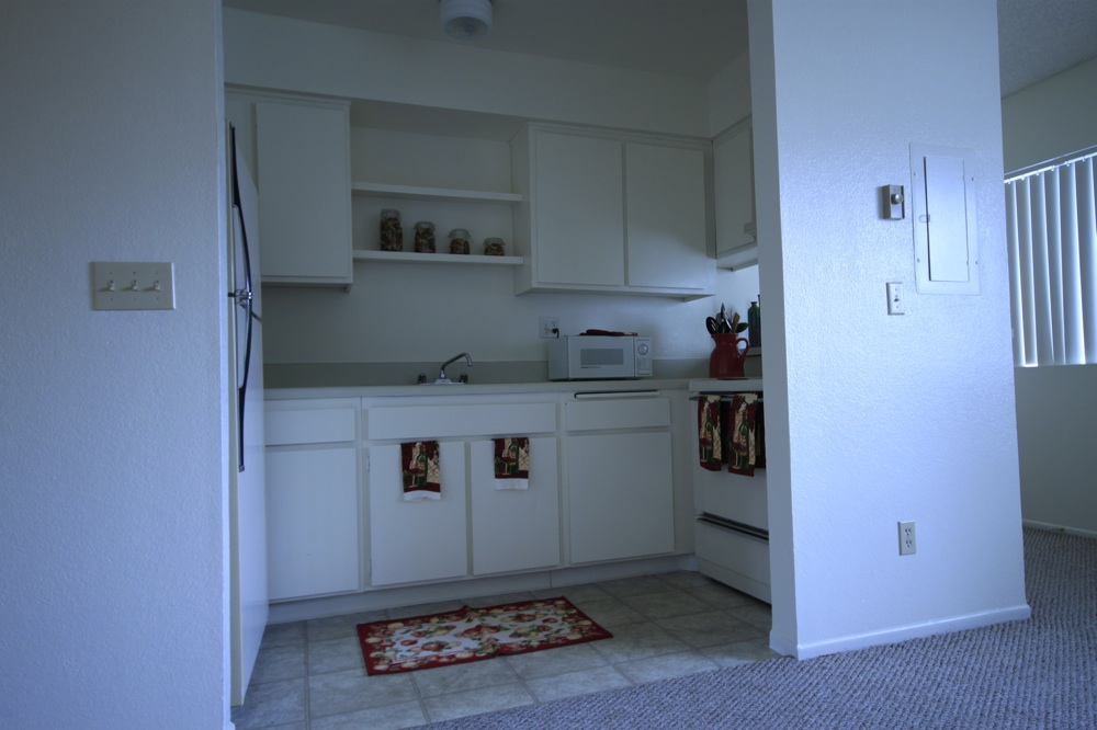 View From Living Room Into The Kitchen. Modern Flat Front Cabinets. 2 Open Shelves Above The Sink.