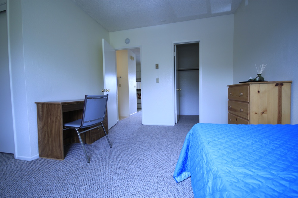 Bedroom Has Plenty Of Room For A Desk, A Dresser And A Bed. There Is A Small Walk In Closet.