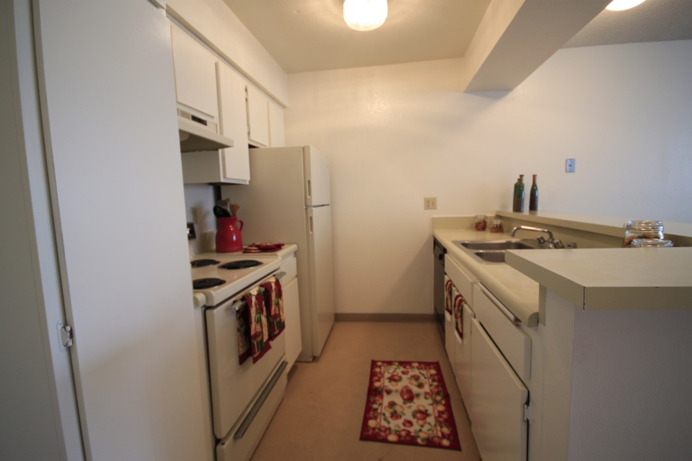 Kitchen Has Tall Pantry Cabinet, Flat Front Modern Cabinets, Bar Counter With Sink Faces Living Room